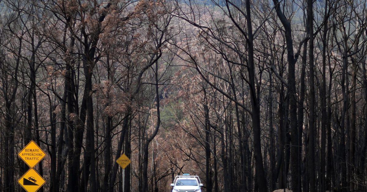 Australia snubs Davos session on Australian fires – POLITICO