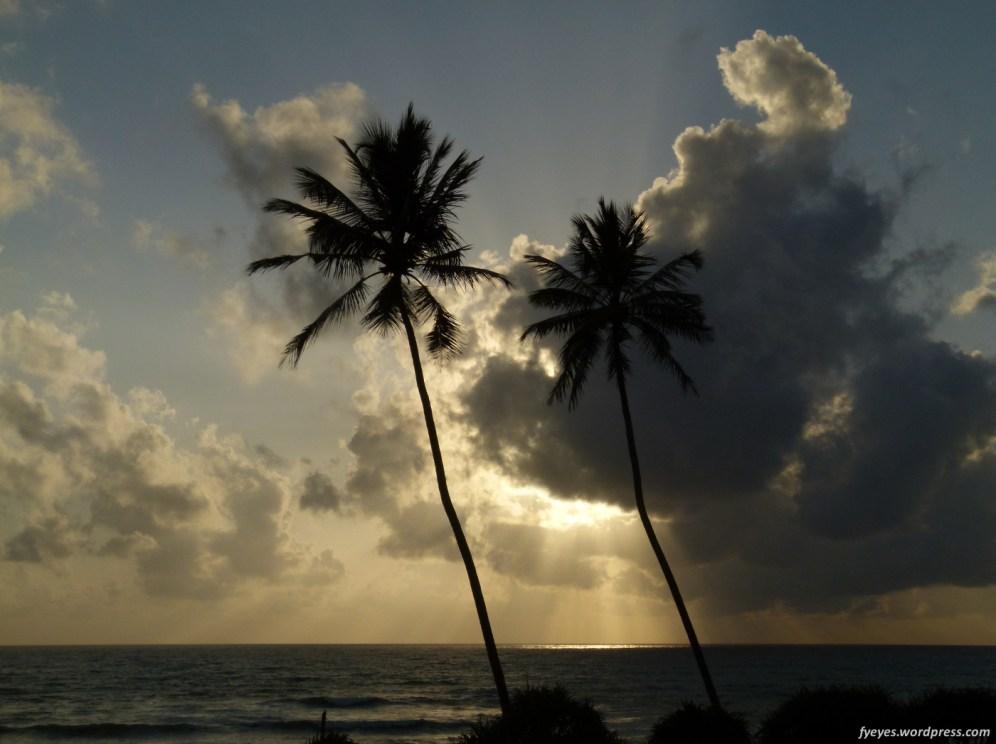 Sri Lanka Dusk