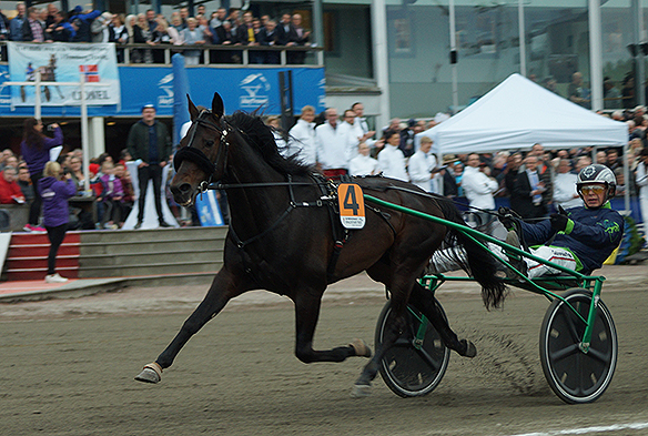 Här vinner hästen Ringostarr Treb Olympiatravet 2018 med kusken Paal Wilhelm. Prissumman var 1.5 miljoner kronor. Foto: Peter Ahlborg