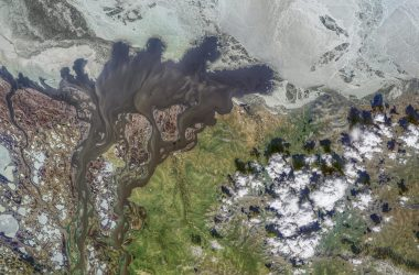 Satellite view of a blackwater river in Siberia.