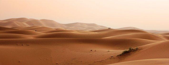 Dune field.