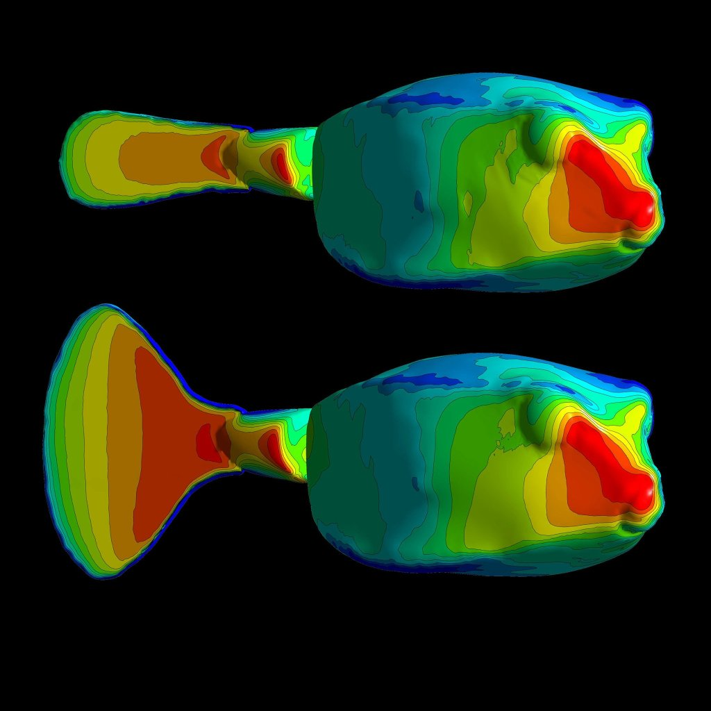 Pressure distributions across a boxfish with a closed and open tail fin.