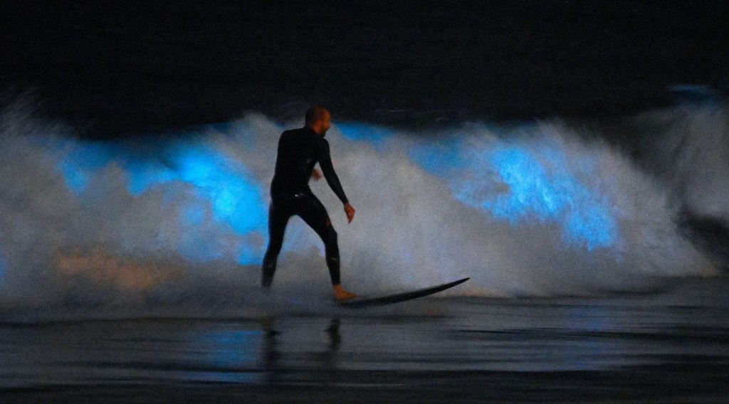 A surfer amid bioluminescent waves at Newport Beach, CA, on 30 April 2020.