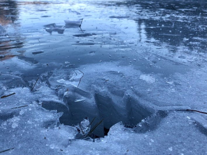 A leaf-shaped hole left in the ice.