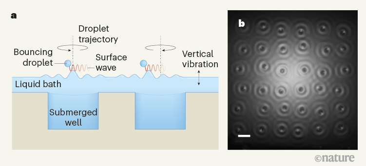 (a) An illustration of the experimental set-up and (b) top-down image of the spin lattice.