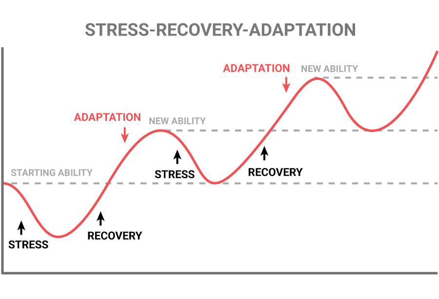 stress-recovery-adaption
