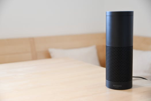 Amazon Alexa, a person without a body: Introducing Blueprints