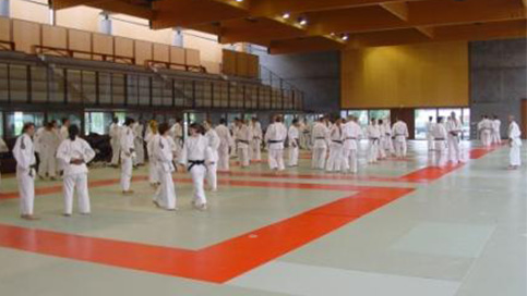 mecenat judo gb consulting coaching