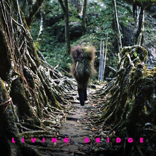 http://ecx.images-amazon.com/images/I/41OQtLc1WzL._SL500_AA240_.jpg