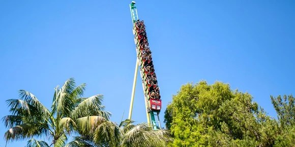 The Montezooma's Revenge roller coaster sticks out above the trees.