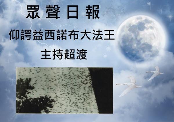 學習仰諤益西諾布大法王  (H.H.第三世多杰羌佛)正法