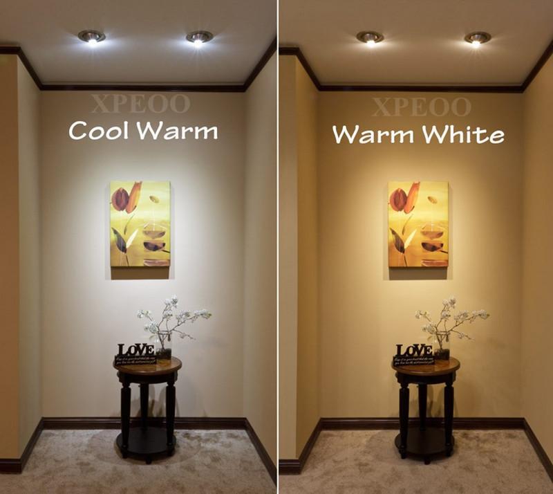 Feit Light Bulbs