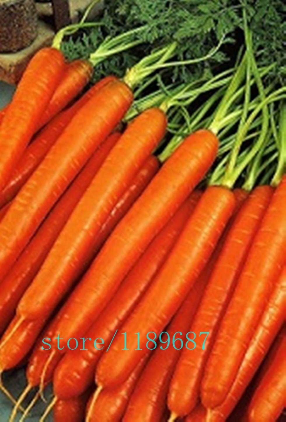 500pcs/bag carrot seeds,fruit vegetable seeds,9 colours to choose,sweet and healthy,plant for home garden