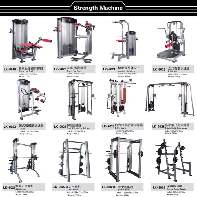 Cheap Commercial Gym Design Specialized Strength Equipment
