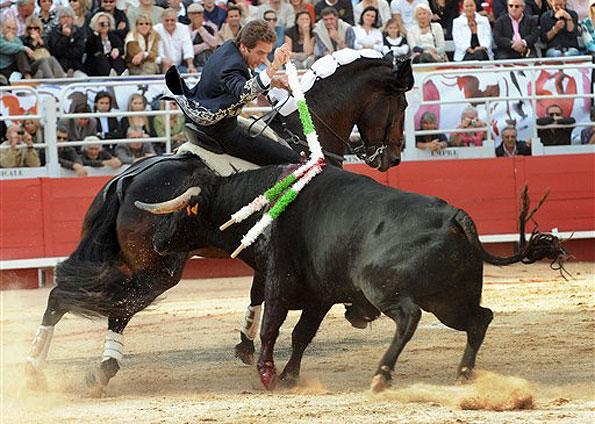 Resultado de imagem para toureiro a cavalo