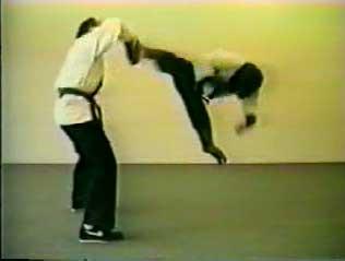 karatemonkey.jpg