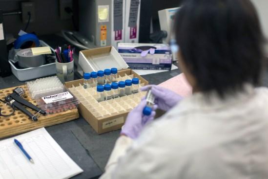 lab-rashmi-loading-trays
