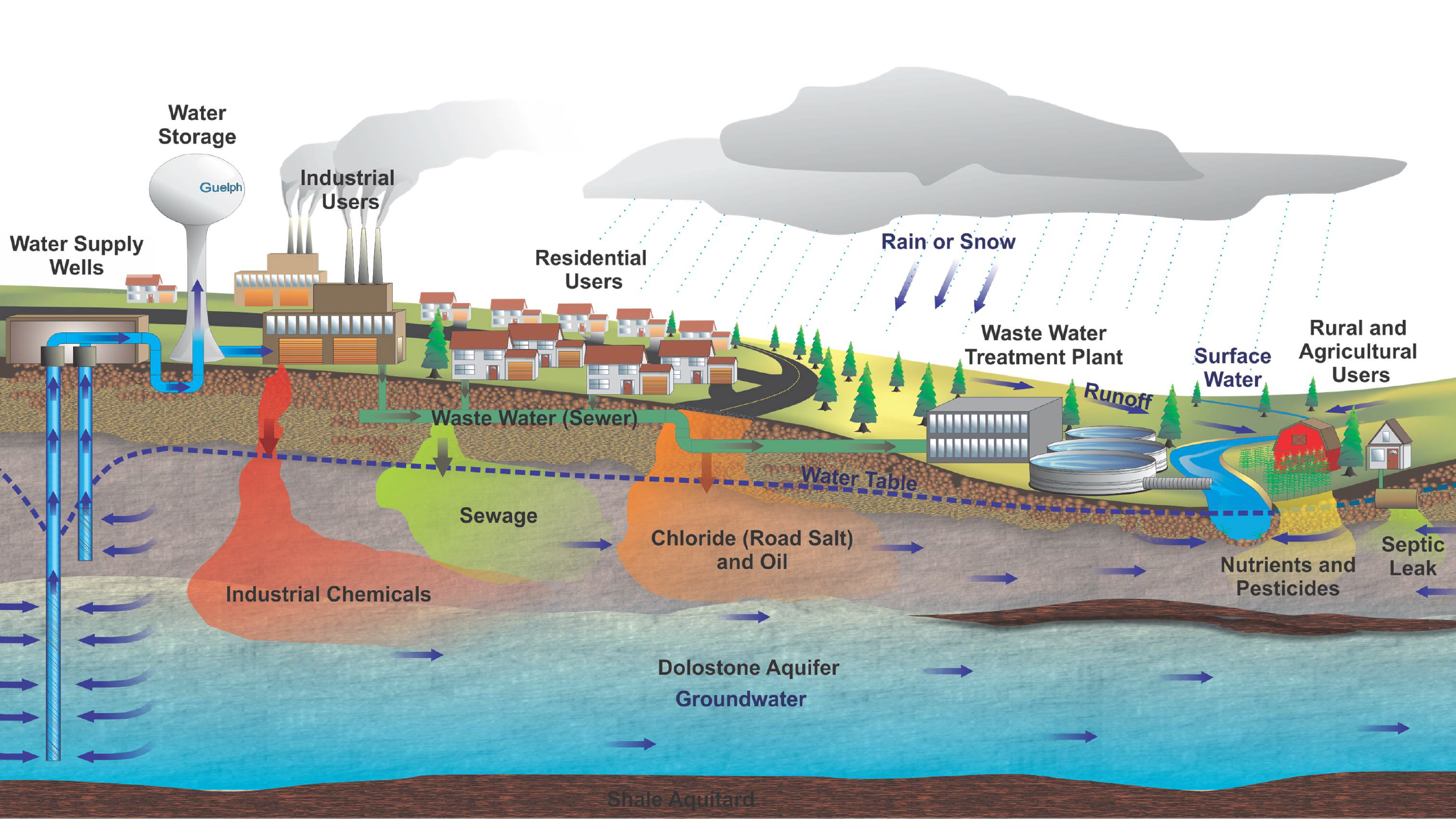 Guelph Water Cycle Diagram