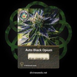 AutoBlackOpium1