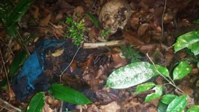 Foto de Polícia registra achado de cadáver em Cururupu-MA