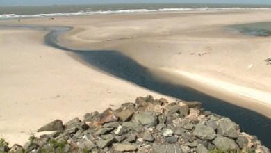 Foto de Praias de São Luís viram fossas de dejetos