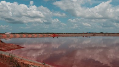 Foto de Sema vistoria barragens de resíduos da Alumar