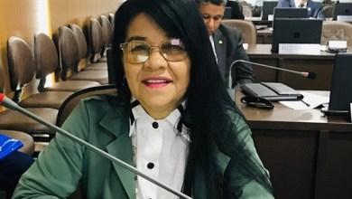 Foto de Projeto de lei de Fátima Araújo vai criar o CEJAAM em São Luís