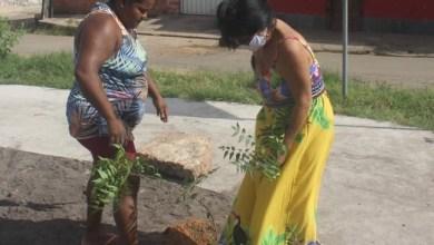 Foto de Vereadora Fátima Araújo vistoria serviços em bairros da Capital