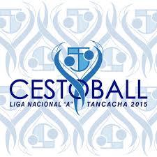 Confederacio Argentina de Cestoball Logo