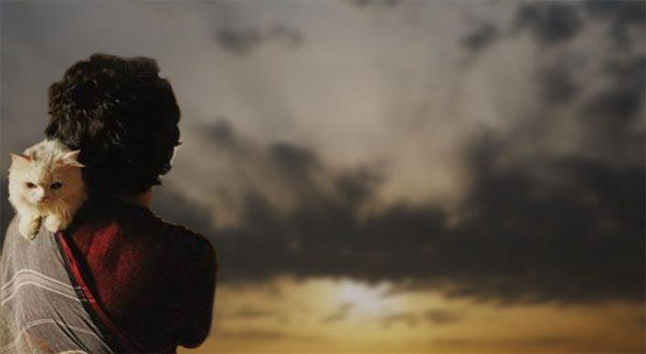 নির্বাসিত : প্রতিকূলে পাল তোলার গল্প || বাবুল হোসেইন