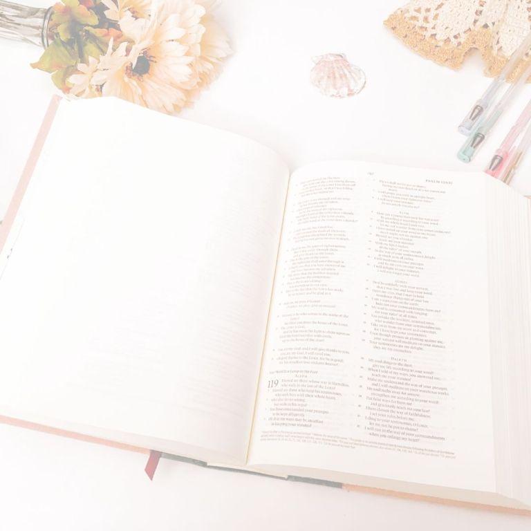 An ESV Journaling Bible