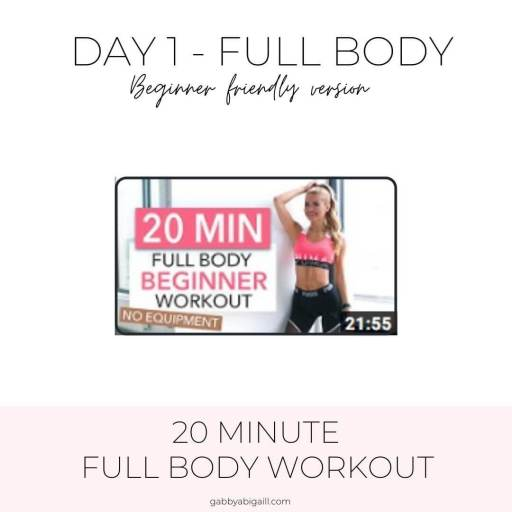 day 1 full body beginner friendly workout