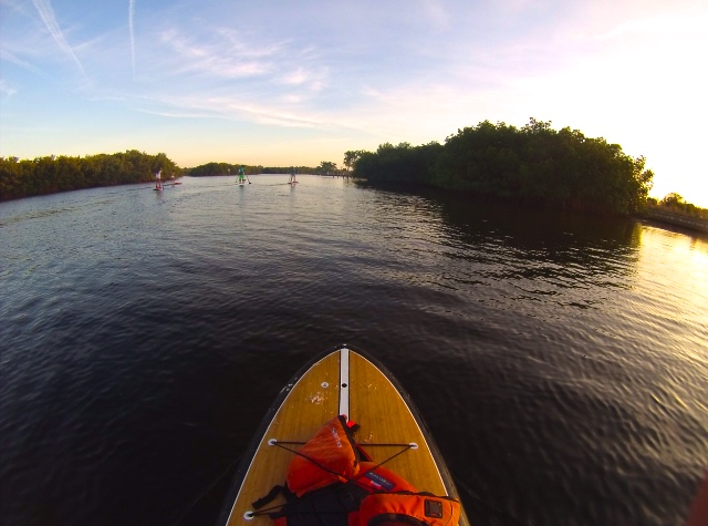 paddleboard city guide to tampa