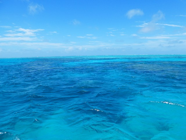 best things to do in tropical north Queensland travel great barrier reef