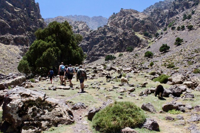 group hiking atlas mountains travel