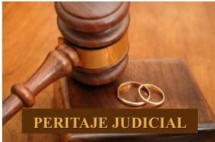 peritaje judicial juan sastre perito
