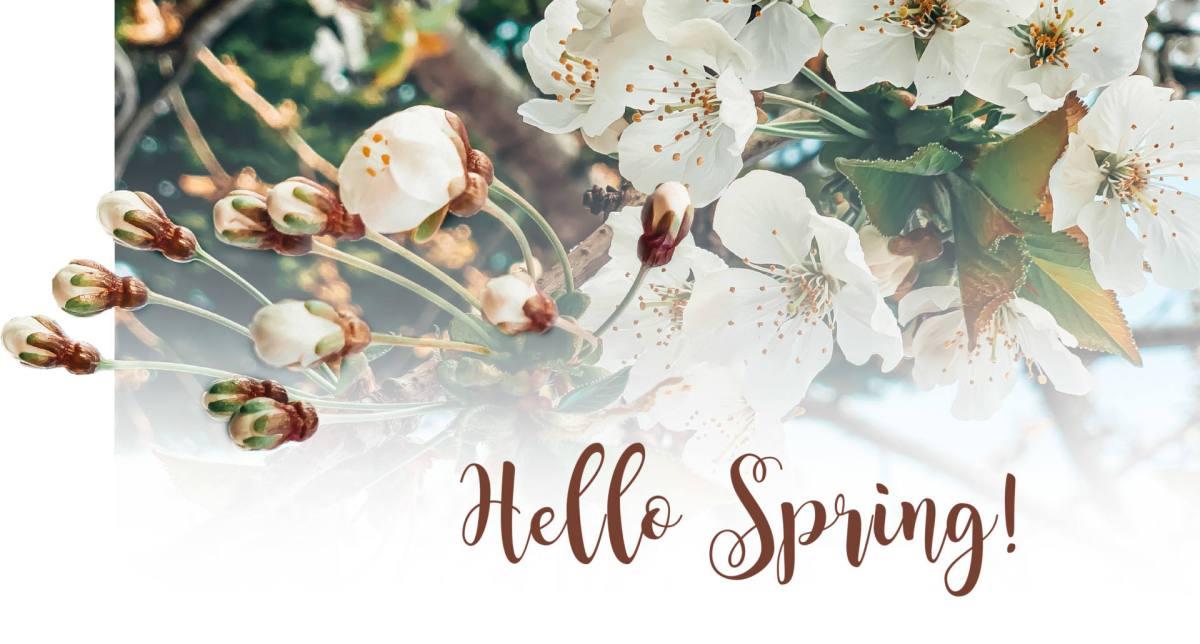 hello spring_papeis_de_parede3