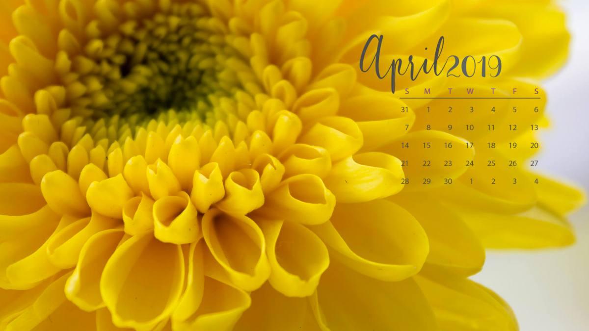 hello_spring_papeis_de_parede_april4