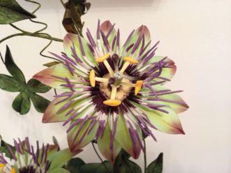 Blumen_Kuchenmesse_0052