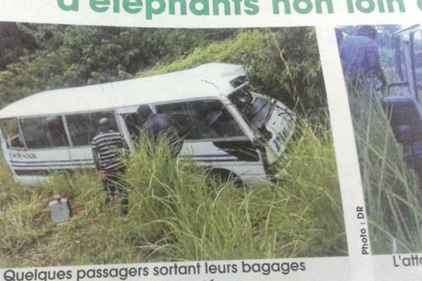 Des éléphants attaquent un bus de transport en commun
