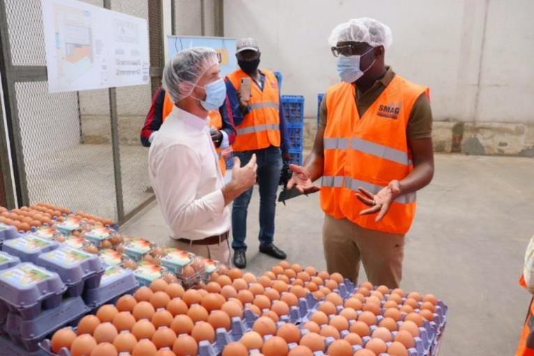 Biendi Maganga Moussavou visite la SMAG, une entreprise qui produit plus de 350 000 poussins par jour