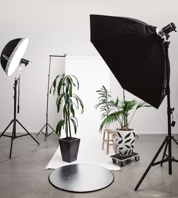 photo studio filled with plants and lights
