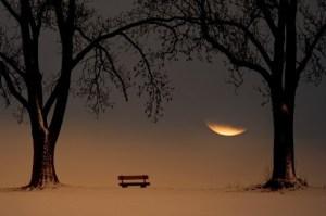 bench-landscape-moon-photography-scene-Favim.com-334141