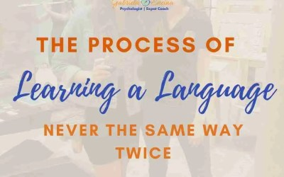 The Process of Learning a Language: Never the Same Way Twice
