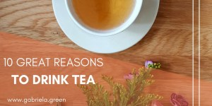 10 Great Reasons to drink tea - Gabriela Green - www.gabriela.green
