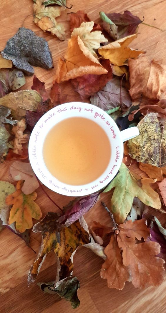 5 autumn Teas I Love www.gabriela.green