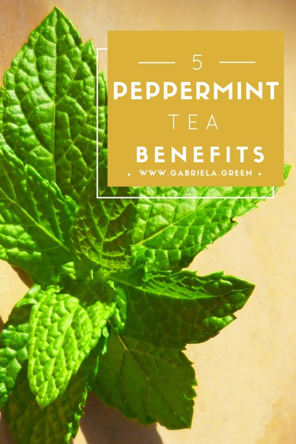 5 Peppermint tea benefits | Mint tea benefits | Bloating, digestion | www.gabriela.green