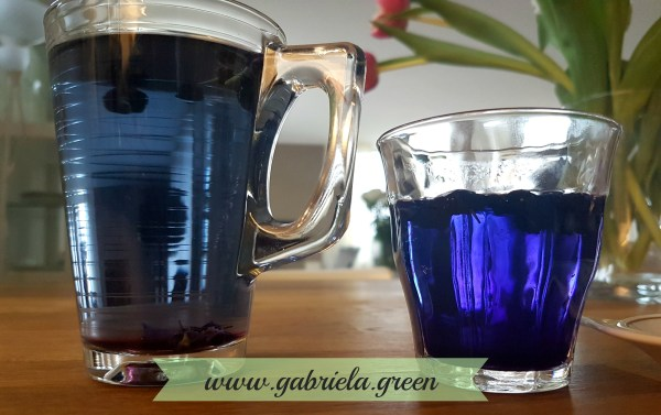 Black Goji Berry tea Hot vs warm water comparison | Gabriela Green | www.gabriela.green