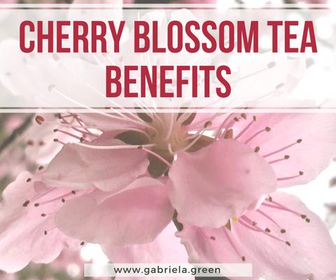 4 Surprising Cherry Blossom Tea Benefits www.gabriela.green
