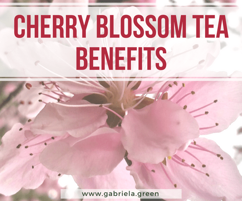 4 Surprising Cherry Blossom Tea Benefits www.gabriela.green